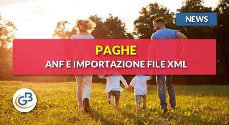 News - Paghe 2019: gestione ANF e importazione file XML